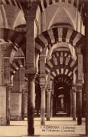 CPA Espagne CORDOBA  Laberinto De Columnas (Catedral) N°7 TBE - Córdoba