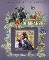 Sierra Leone   2015 Fauna  Common Chimpanzee - Sierra Leone (1961-...)
