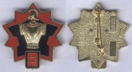 Insigne De L'Etablissement Du Génie De Rastatt - Armée De Terre