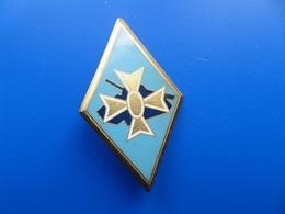 1° Division Blindée, Insigne Blindee , Insigne , Drago Paris - Armée De Terre
