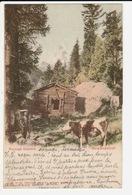 Paysage Alpestre - Berglandschaft - VS Wallis