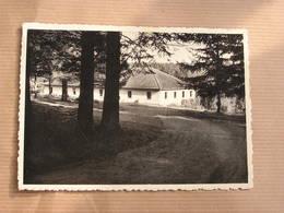 LOUETTE SAINT PIERRE Centre De Vacances Y.W.C.A. Commune De Gedinne België Belgique Carte Postale Postcard - Gedinne
