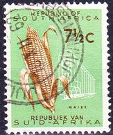 Südafrica RSA - Maiskolben (Zea Mays) (MiNr: 294) 1961 - Gest Used Obl - South Africa (1961-...)