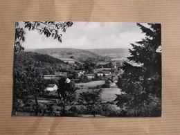 EREZEE Paysage Vers Estinée Ardenne  Province De Luxembourg België Belgique Carte Postale Postcard - Erezée