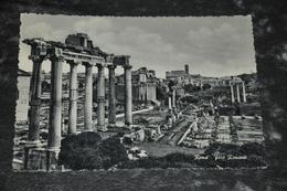 5555   ROMA, FORO ROMANO - Roma