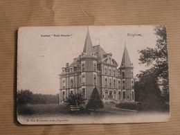 HOOGBOOM Kasteel Oude Gracht  Province Anvers Provincie Antwerpen België Belgique Carte Postale Postcard - Brasschaat