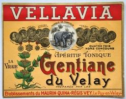 Liqueur De GENTIANE Du VELAY- Apéritif Tonique VELLAVIA   Etiquette ANCIENNE (laquée)  TB (éléphant) Puy /A11 - Etiquettes