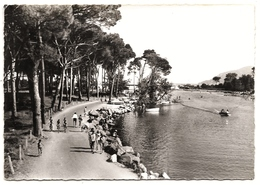 D 06 . CPSM +/-1960 .  MANDELIEU - LA NAPOULE . L'es Bords De SIAGNE Et La Pinede . - Other Municipalities