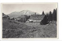 21661 - Furna Scära I.Prättigau Chalet Et Vaches - GR Grisons