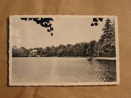SELOIGNES L' Etang De La Fourchinée Commune De Momignies Hainaut België Belgique Carte Postale Postcard - Momignies
