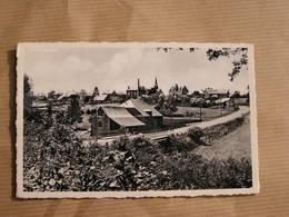 SELOIGNES Le Moulin Et Panorama Du Village Commune De Momignies Hainaut België Belgique Carte Postale Postcard - Momignies