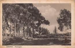 Ethiopie - Asmara - Paesaggio - Ethiopie