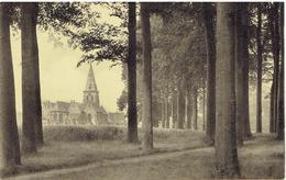 BEERNEM - Kerk ( Achterzijde ) - Uitg. De Prest - Martens - Beernem