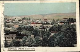Cp Château Salins Lothringen Moselle, Vue Générale - Autres Communes
