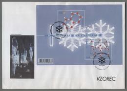 C4492 SLOVENIA FDC 2014 MEDNARODNO LETO KRISTALOGRAFIJE SKUPNA IZDAJA 0.64 ExtraGrand Envelope Foglietto - Slovenia