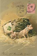 SOUHAITS SINCÈRES - Couple De Cochons (carte Gaufrée) - Cochons