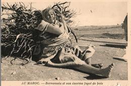 Au Maroc, Bernoussia Et Son énorme Fagot De Bois - Non Classés