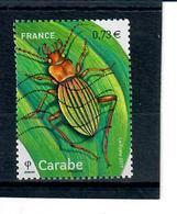 --yt 5150 - Carabe - France
