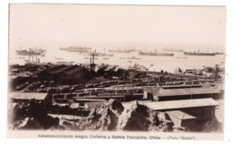 CHILI - Establecimiento Anglo Chilena Y Bahia TOCOPILLA  (carte Photo) - Chili