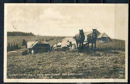 "CPSM S/w AK German Empires Kirchzarten,Oberried  1921 ""Gasthof U.Pension,z.Halde,Schauinsland,Bad Schwarzwald"" 1 AK Used - Ansichtskarten"