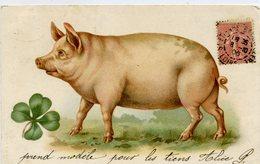 COCHON Avec Trèfle à 4 Feuille - Dos Simple - - Cochons