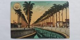 Rio De Janeiro, Avenida Do Mangue, Brasil, 1911 - Rio De Janeiro