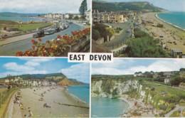 AO67 East Devon Multiview - England