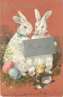 JOYEUSES PÂQUES - Couple De Lapins Et Poussin.(carte Gaufrée) - Pâques