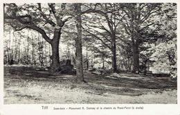 CPA  TILFF : Sous-Bois - Monument A. Donnay Et Le Chemin Du Rond-Point - Esneux