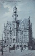 CPA - Audenarde - L'Hôtel De Ville - SBP N° 18 - Carte Bleue - 1907 - Sint-Truiden