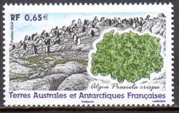 TAAF - 2013 - Algue : Prasiola Crispa ** - Terres Australes Et Antarctiques Françaises (TAAF)
