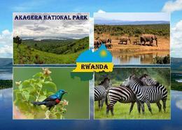 Rwanda Akagera National Park New Postcard Ruanda AK - Ruanda