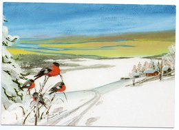 Postal Stationery RED CROSS Finland 1998 - CHRISTMAS POSTCARD- VOGELS / BIRDS / BULLFINCHES - Postage Paid - Port Payé - Finland