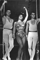 """CINEMA MOVIE ACTORS - Burt Lancaster / Gina Lollobrigida & Tony Curtis In """"Trapecio"""" """"Trapeze"""" Film PC 1957 - Artistas"""