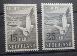 NEDERLAND  1951   Luchtpost   Lp 12 /  Lp 13   Licht Spoor Scharnier ¨     CW  600,00 /  NVPH 2017 - Poste Aérienne
