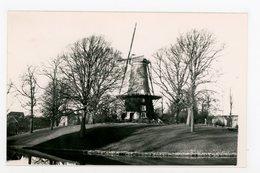 D012 - Kmaar - MOLEN - Foto In Formaat Van Een Kleinformaat Kaart - Moulin - Mill - Mühle - Alkmaar