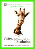 ADVERTISING - PUBLICITÉ - MUSÉUM NATIONAL D'HISTOIRE NATURELLE - VISITEZ LA GRANDE GALERIE DE L'ÉVOLUTION - GIRAFE - - Publicité