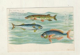 Cpa   POISSONS D AVRIL - April Fool's Day