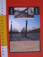 G.2 ITALIA GATTINARA VERCELLI - CARD NUOVA - 2005 CENTO ANNI TEMPESTA METEO UVA VINO WINE AGRICOLTURA VITE - BLU - Bâtiments & Architecture