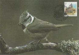 1000. BUZIN  LA MESANGE HUPPEE - 1985-.. Oiseaux (Buzin)