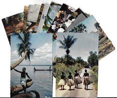 L'AFRIQUE EN COULEURS Africa In Pictures > LOT Ensemble De  13 Cpsm  Voir Scans  R/V De Toutes Les Cartes - Non Classés