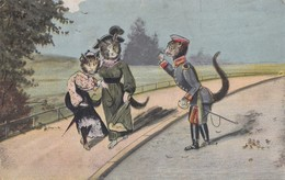 Dressed Humanised Cats Postcard 1905 - Katten