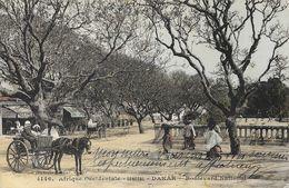 Afrique Occidentale Française - Sénégal, Dakar - Boulevard National - Collection Fortier - Carte Colorisée N° 4146 - Sénégal