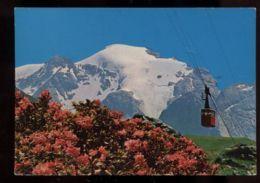 C986 FUNIVIA TELEFERICA SEGGIOVIA A CIMA PORDOI VG 1981 - Italia