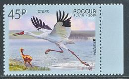 "RUSSIA/Rußland EUROPA 2019 ""National Birds"" Set Of 1v** - 2019"