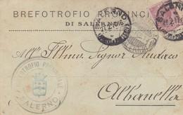 STORIA POSTALE - SALERNO - BREFOTROFIO PROVINCIALE DI SALERNO  -VIAGGIATA PER ALBANELLA ( SALERNO) - 1900-44 Vittorio Emanuele III
