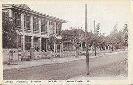 Afrique Occidentale Française - Sénégal, Dakar - L'Avenue Courbet - Edition Hélou - Carte CIM N° 14 Non Circulée - Sénégal