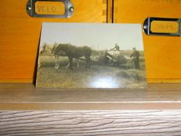 Carte Postale  Ferme Paysans Attelage Moisson Chevaux - Spannen