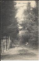 PRY - Fonds Des Bois (Walcourt) 1913 - Walcourt