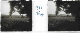 Plaque De Verre Stéréoscopique Positive - Année 1944 - Probablement Piscop - Un Verger - Plaques De Verre